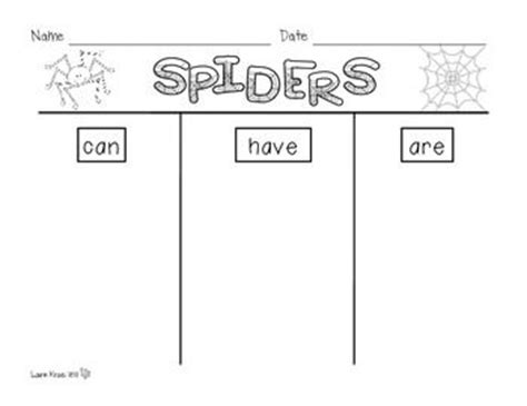 spider report organizer spiders research activities and graphic organizers