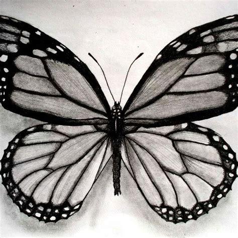 imagenes a lapiz de mariposas dibujos a lapiz de mariposas stunning dibujo a la lapiz