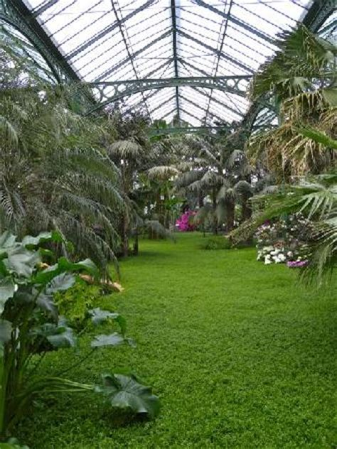 Wilhelma Zoo And Botanical Garden Greenhouse Picture Of Wilhelma Zoo And Botanical Garden Stuttgart Tripadvisor