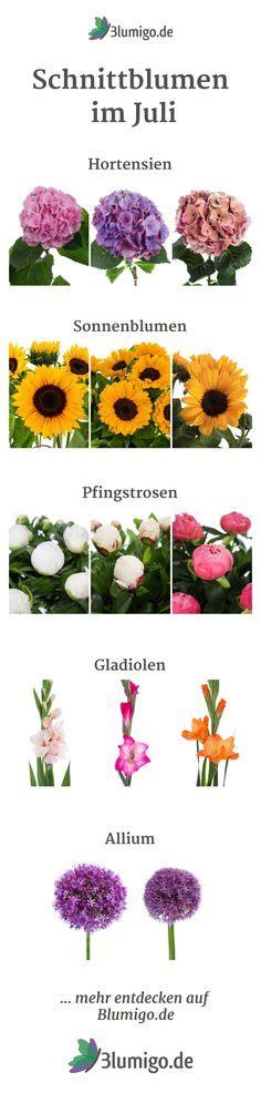 Welche Blumen Im Mai by Schnittblumen Im Mai Welche Blumen Haben Im Mai Saison