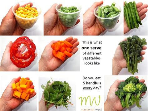 vegetables 1 serving what is one serving of vegetables search meal