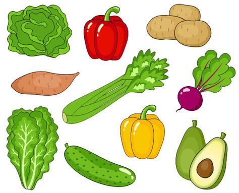vegetable clip fruits vegetables clipart vegetable farm pencil and in