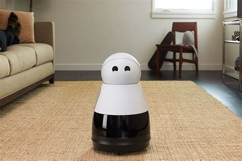 your own personal robot companion kuri 8 is a home