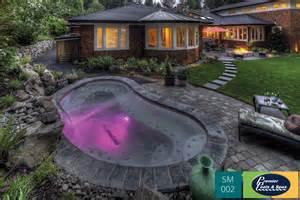 small pool small pools spools premier pools spas