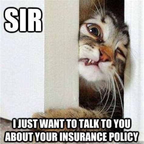 Insurance Meme - 23 best memes images on pinterest insurance humor funny