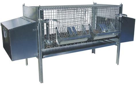 costruire gabbia coniglio gabbia per coniglie fattrici magricola senise pz