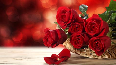 Roses Delivery by Bulgaria Florist Flowers Delivery