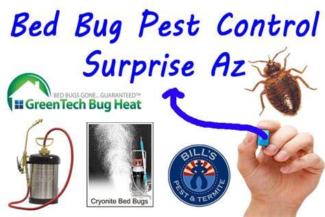 bed bugs pest control bed bug pest control surprise az bills pest termite