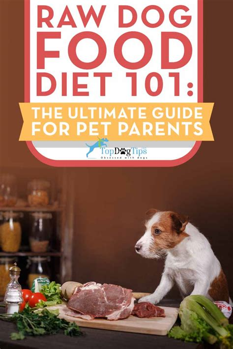 diet for dogs diet for dogs 101 the ultimate guide top tips