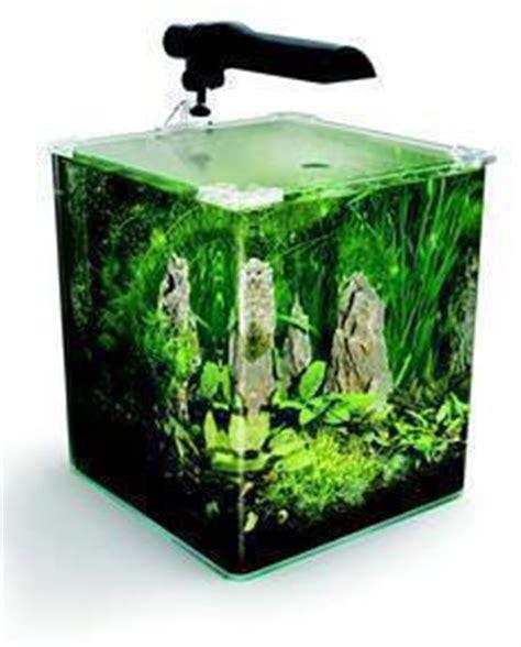 acquari d arredo piccoli acquari d arredo