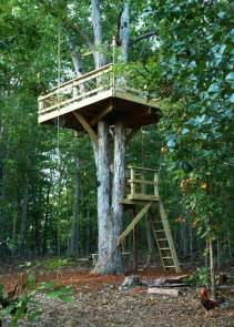 Backyard Treehouse Ideas 30 Tree Perch And Lookout Deck Ideas Adding Diy Structures To Backyard Designs