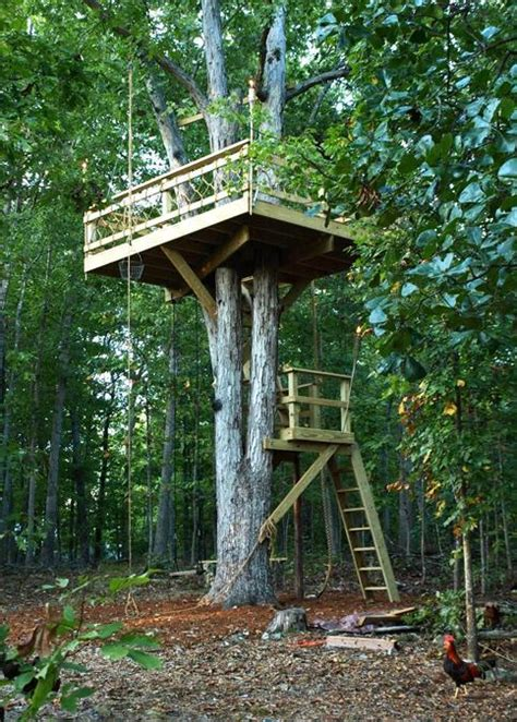 backyard treehouse designs 30 tree perch and lookout deck ideas adding fun diy