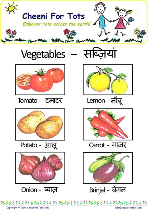 t vegetables name vegetables and fruits names www imgkid the image