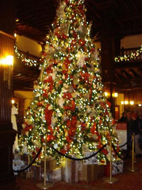 christmas tree in the lobby picture of hotel del