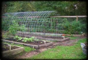 Raised Bed Tomato Trellis Ever Tried A Garden Tunnel Theprepperproject Com