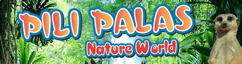 Pili Search Pili Palas Nature World Darwin Escapes