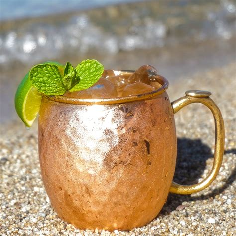 moscow mule moscow mule recipe drinkware essentials