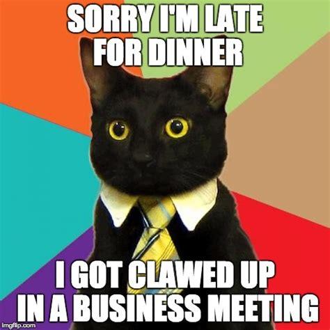 business cat meme imgflip