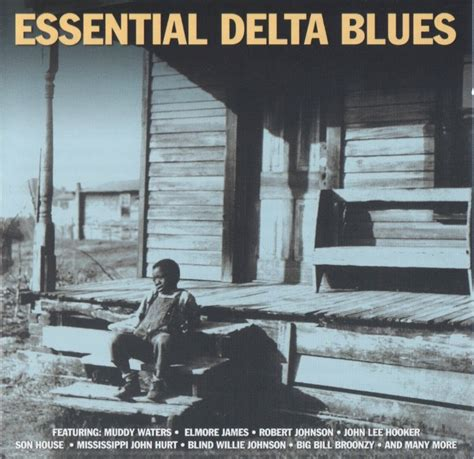 house blues five essentials to home of the blues essential delta blues