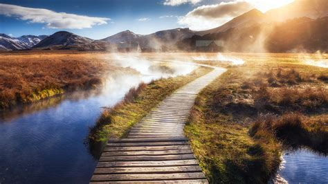 wooden path wallpapers hd wallpapers id