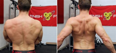 bench press shoulder blades muscular strength articles