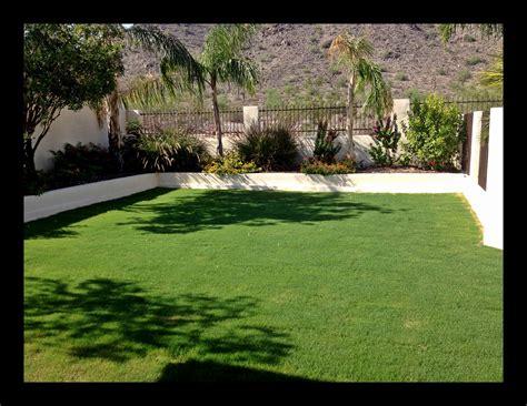 backyard rye proqual landscaping overseeding my backyard with winter