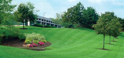 commercial landscaping services commercial landscaping services home turf landscaping