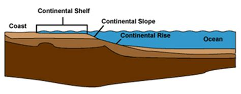 Continental Shelf And Continental Slope by Landforms In The World Coastal And Oceanic Landform 17