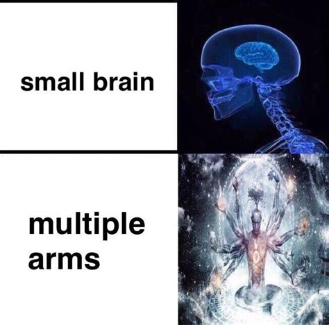 Meme Brain - the real brain meme brainmemes