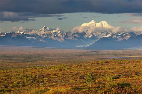 Home Decor Colors by Scenic View Of Tundra And Taiga In Photograph By Michael