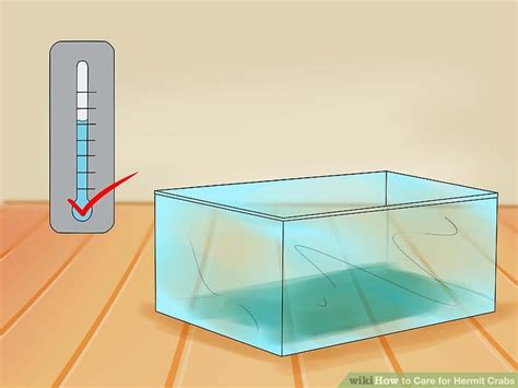do hermit crabs need a heat l the best ways to care for hermit crabs wikihow