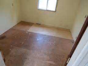 Painted Flooring by Black Spruce Hound Painted Plywood Floors A How To