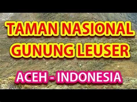 Youtuber Indonesia 004 wisata indonesia taman nasional gunung leuser langkat