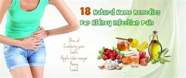 kidney home remedy 18 home remedies for kidney infection