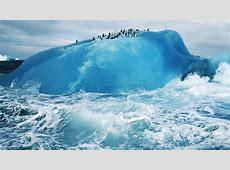 md73-penguin-iceberg-snow - Papers.co Macbook Pro