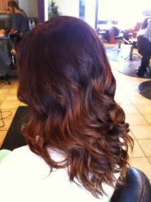 fall hair colors for brunettes fall ombre hair with tips if i decide