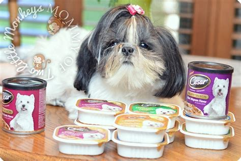 food recipe for shih tzu cesar meaty selects high quality food for small dogs