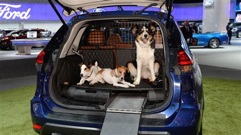 nissan car for dogs nissan unveils rogue dogue vehicle for owners