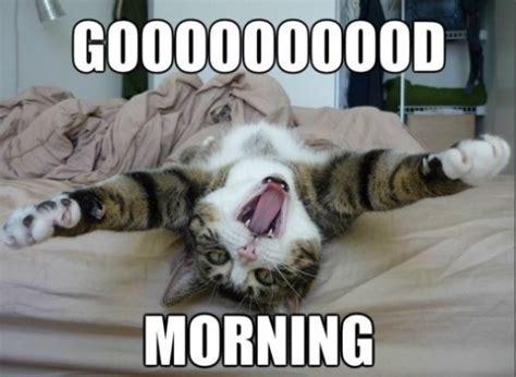 Morning Meme - lol 2014 good morning