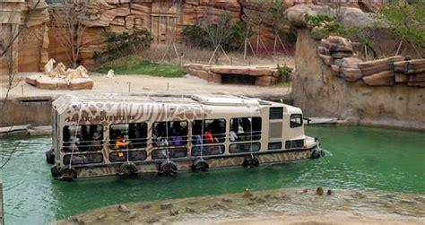 theme park zoo zoo korea gyeonggi do have you ever visited korea