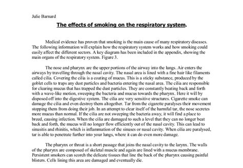 Respiratory System Essay by The Effects Of On The Respiratory System A Level Science Marked By Teachers