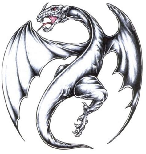 european dragon tattoo designs european www pixshark images