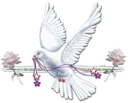 imagenes religiosas catolicas animadas gif paradise bird gifs