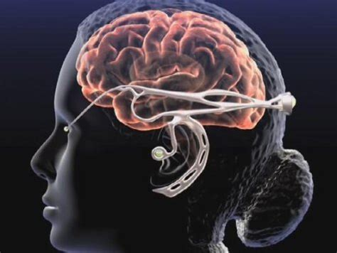 ode to the brain positiveneuro neurotechnology social and revolution big think