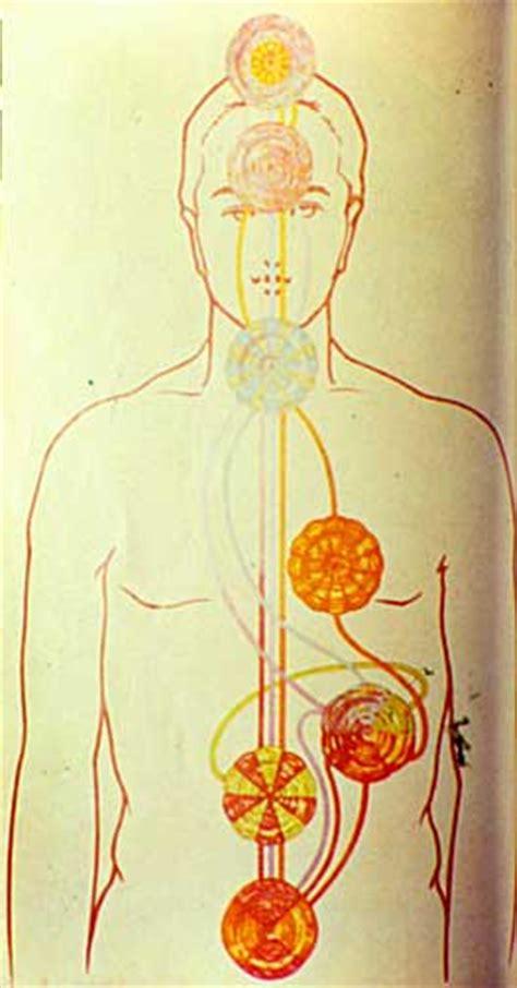 splenic chakra the human chakra system