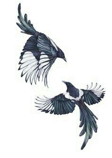 white tiger tattoo queenstown nz a pretty good drawing of a magpie in flight magpie