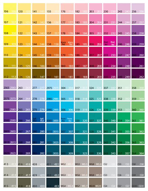 basic color chart printable related keywords basic color
