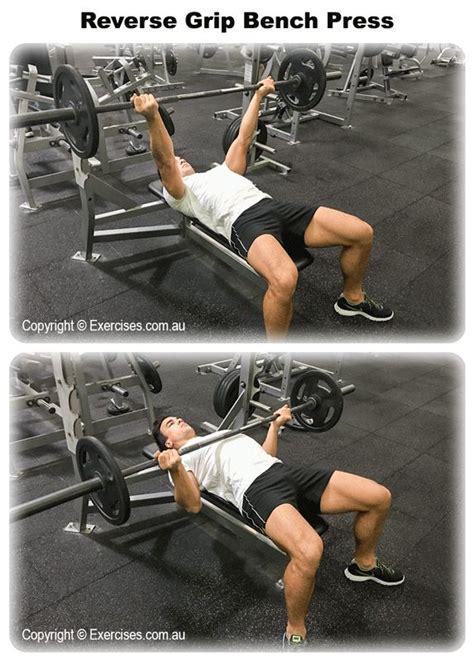 correct grip for bench press 25 b 228 sta bench press id 233 erna p 229 pinterest muskel