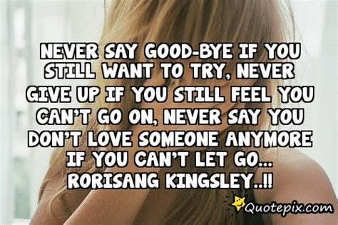 never say bye if you still want to try never give up