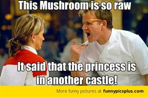 Hells Kitchen Meme - 6 best of hells kitchen memes funny pictures